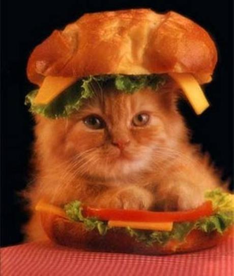 burger-1.jpg-1