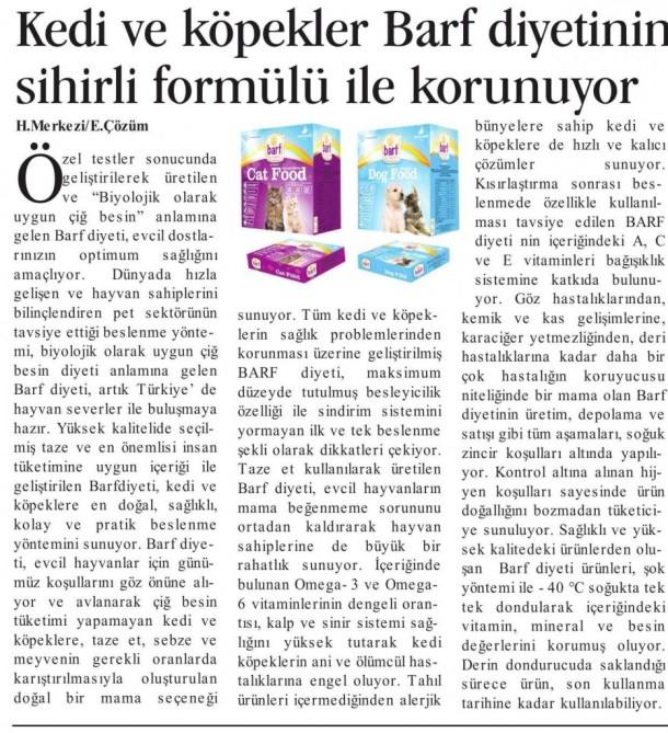 BARF-Ekonomik-Çözüm-19-Ocak-2013-933x1024