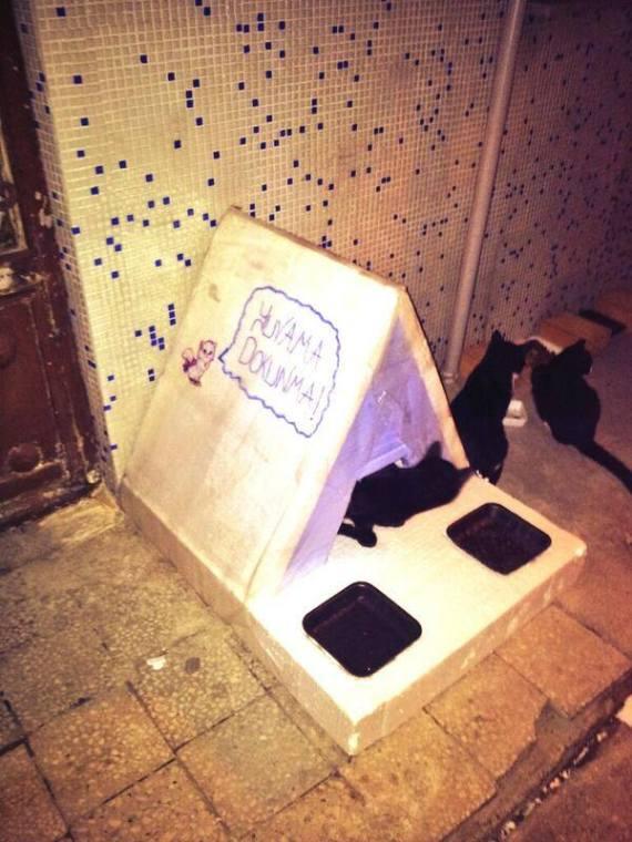 Bastet Tasarım minik kedi evi