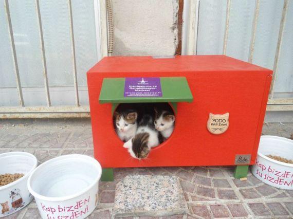 Podo markasının mini pisi karavanı keşke daha uygun fiyatlı olsa :(