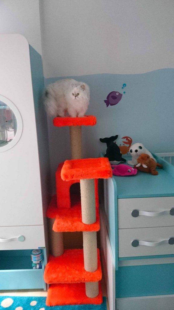 Bu da bebek odası için yaptırdığım turuncu ünitemiz ve Coco hanım!
