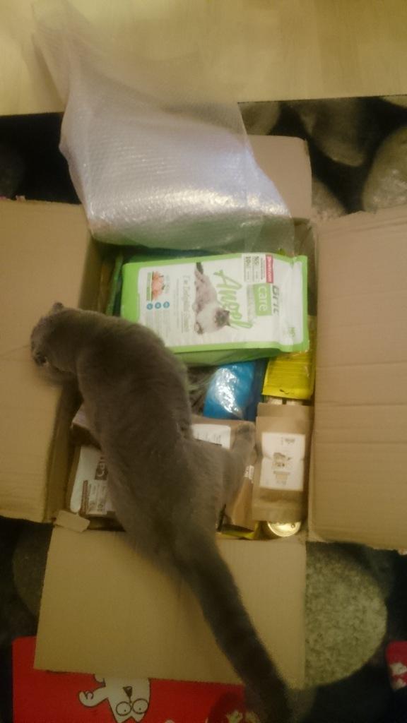Gelen ürünler kalite kontrol kedisi Misha tarafından hemen denetlenmeye alındı :)