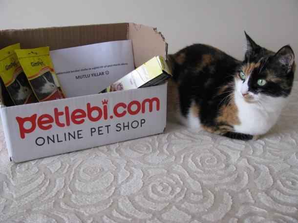 Petlebi'nin hediye gönderdiği şanslı bir minnoş olan Maşuk ♥